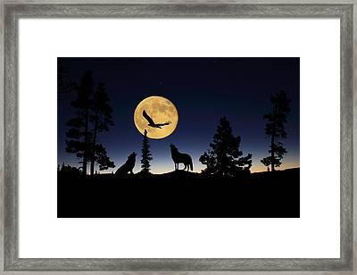 After Sunset Framed Print by Shane Bechler