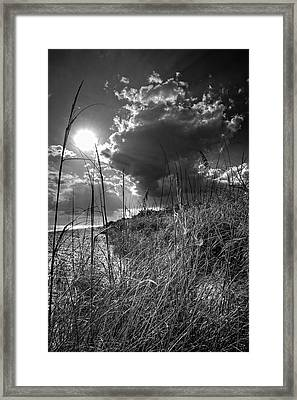 Afternoon At A Sanibel Dune In Blank And White Framed Print by Chrystal Mimbs
