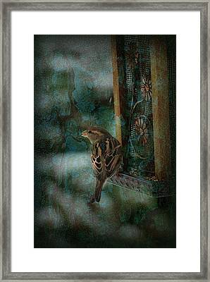 Afternoon Of A Sparrow Framed Print by Angie Tirado