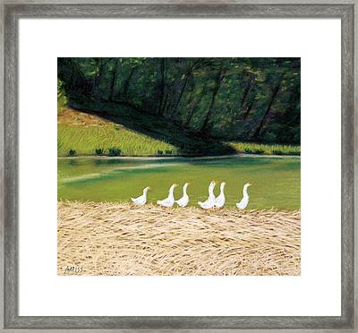 Afternoon On Goose Pond Framed Print by Jan Amiss