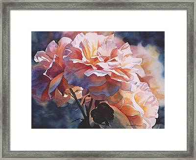 Afternoon Rose  Framed Print by Sharon Freeman