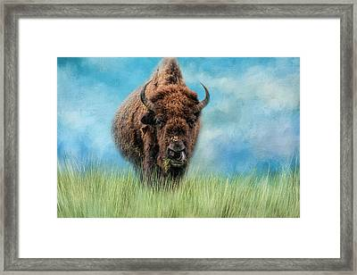 Afternoon Snack Framed Print by Jai Johnson