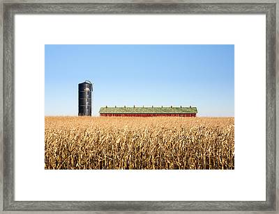 Against The Grain Framed Print by Todd Klassy