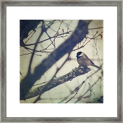 Against The Wind Framed Print by Amy Tyler