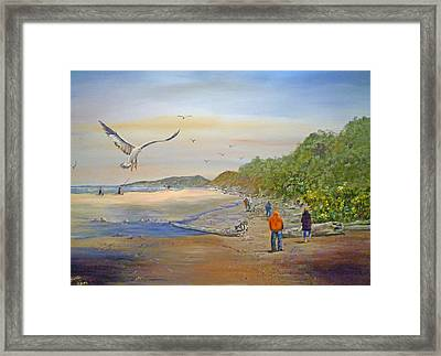 Agate Beach Framed Print by Betty Florea