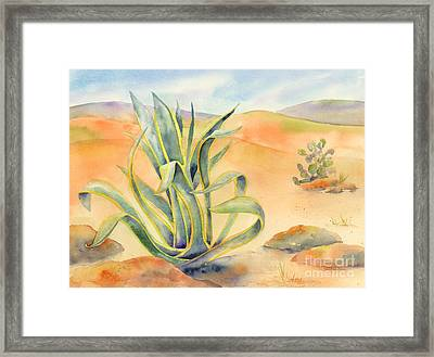 Agave In Borrego Framed Print by Amy Kirkpatrick