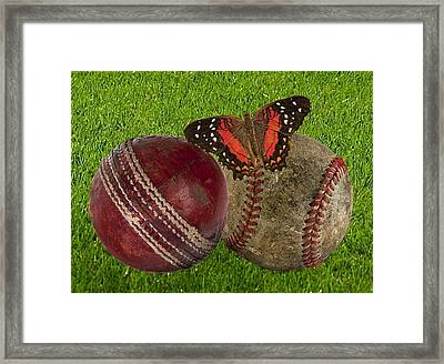 Age Basketball And Cricket Ball Framed Print by Manfred Lutzius