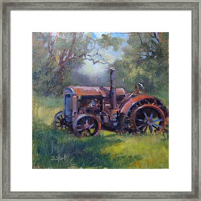 Aged To Perfection Framed Print by Donna Shortt