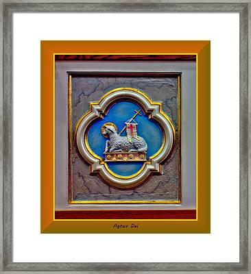Agnus Dei Framed Print by Myrna Migala