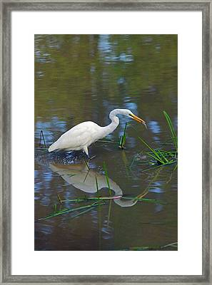 Ah... Breakfast Framed Print by Randall Ingalls