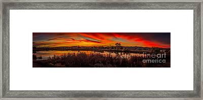 Airport Pond Sunrise Framed Print by Robert Bales