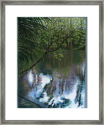 Alafia River Reflection Framed Print by Susan Jenkins