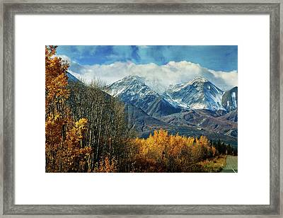 Alaskan Fall 1 Framed Print by Marty Koch