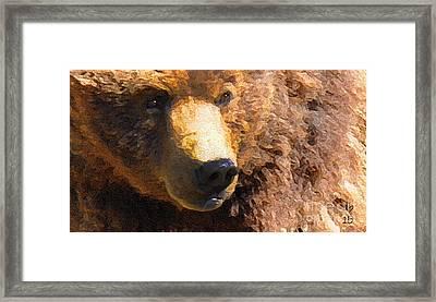 Alaskan Kodiak Bear Framed Print by Diane E Berry