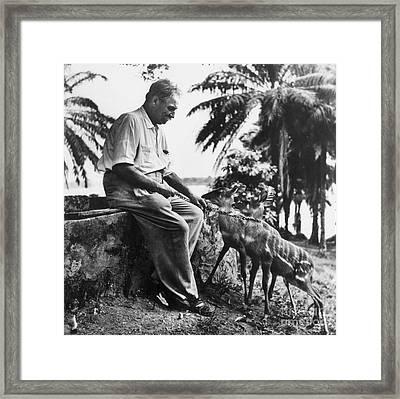 Albert Schweitzer Framed Print by Granger