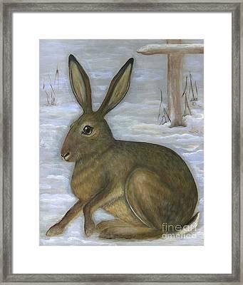 Albert The Hare Framed Print by Anna Folkartanna Maciejewska-Dyba