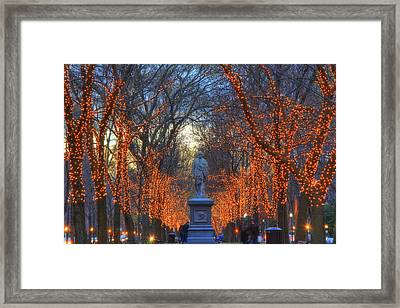 Alexander Hamilton On The Commonwealth Framed Print by Joann Vitali