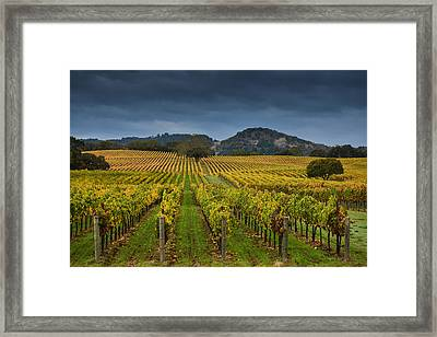 Alexander Valley Framed Print by RMB Images / Photography by Robert Bowman