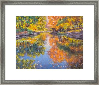 Alfred Caldwell Lily Pool 1 Framed Print by Fiona Craig