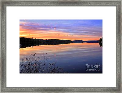 Algonquin Dawning Framed Print by Charline Xia