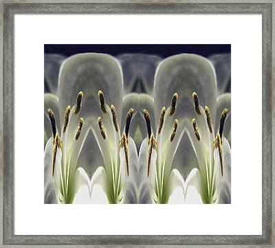 Alien Lily Framed Print by Terence Davis