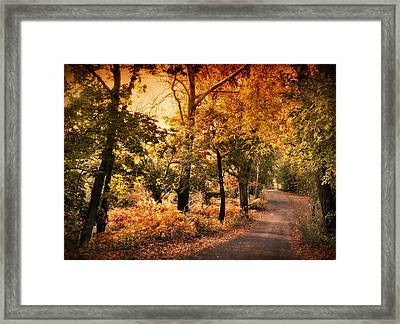 Alight Framed Print by Jessica Jenney
