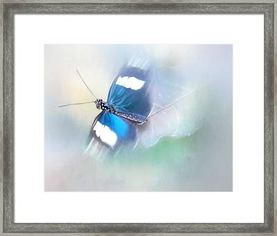 All A Flutter Framed Print by David and Carol Kelly