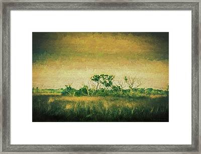 All Alone Framed Print by Marvin Spates
