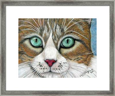 All I Want For Christmas Is A Home Framed Print by Beverly Fuqua