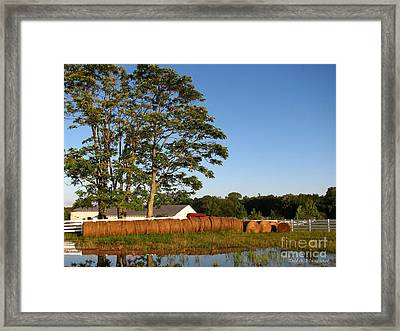 All In A Row Framed Print by Todd A Blanchard