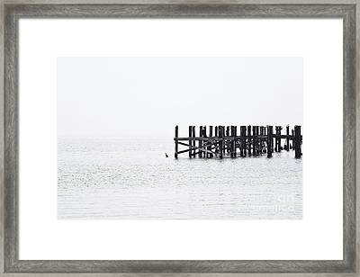 All That Remains Framed Print by Scott Pellegrin