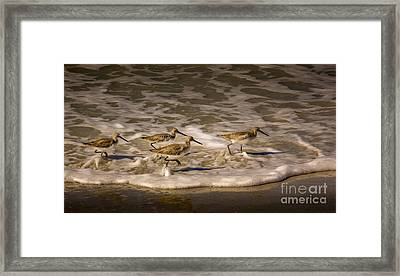 All Together Now Framed Print by Marvin Spates