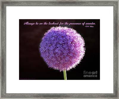 Allium Framed Print by Gena Weiser