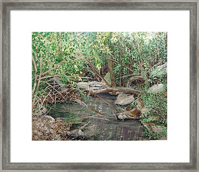 Alma House Creek Framed Print by Sharon  De Vore