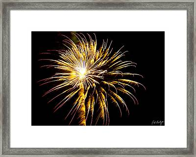 Almost A Tree Framed Print by Phill Doherty