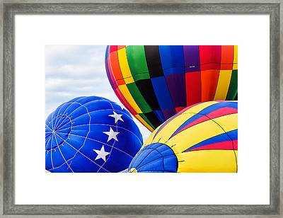 Almost Ready To Fly Framed Print by Mary Jo Allen