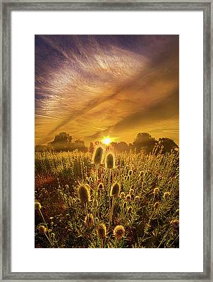 Almost Seemed An Eternity Framed Print by Phil Koch