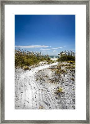 Almost There Framed Print by Marvin Spates