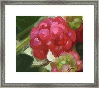 Almost There Part One Framed Print by Patti Siehien
