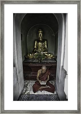 Alone At Shwedagon Framed Print by David Longstreath