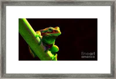 aLone Framed Print by Jano Schulze