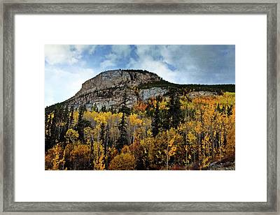 Along The Alaskan Highway 1 Framed Print by Marty Koch