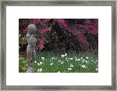 Along The Garden Pathway Framed Print by Suzanne Gaff