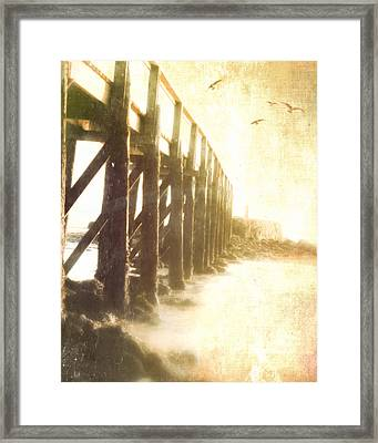 Along The Pier Framed Print by Hal Halli