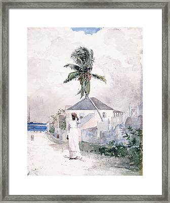 Along The Road   Bahamas 1885 Framed Print by Winslow Homer
