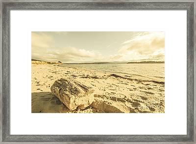 Alonnah Driftwood Framed Print by Jorgo Photography - Wall Art Gallery