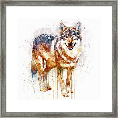 Alpha Wolf Framed Print by Marian Voicu