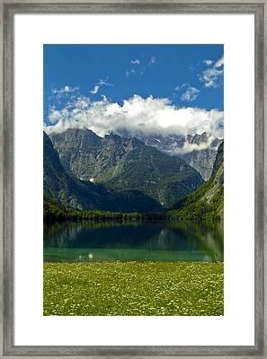 Alpine Meadow Framed Print by Frank Tschakert