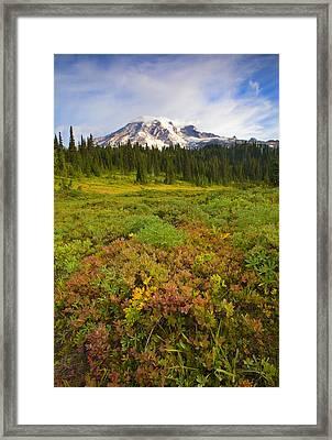 Alpine Meadows Framed Print by Mike  Dawson