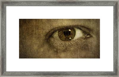 Always Watching Framed Print by Scott Norris